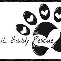 Lil Buddy Rescue